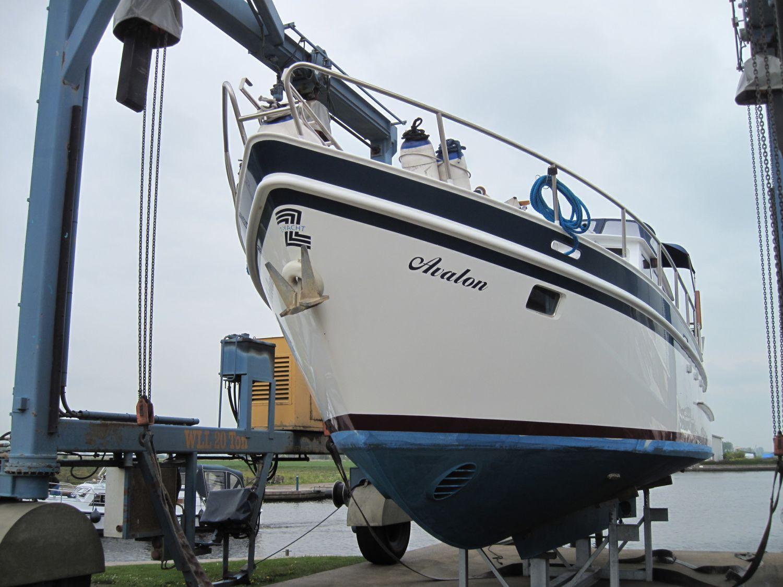 Z Yacht 41